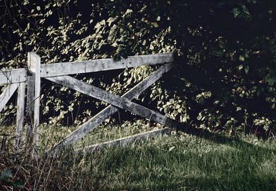 Painted Garden Gate Photograph - Forgotten Garden by Odd Jeppesen
