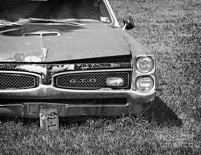 Photograph - Forgotten Gto by David Cutts