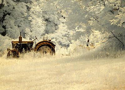 Photograph - Forgotten Harvest by Luke Moore