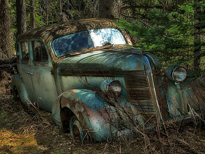 Photograph - Forgotten In The Forest by Trever Miller