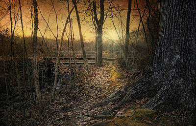 Photograph - Forgotten Path by Robin-Lee Vieira