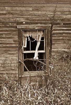 Forlorn Window Print by Douglas Barnett