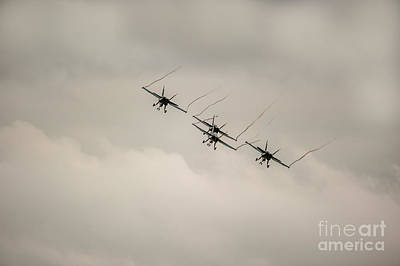 Photograph - Formation Flying by Ray Warren