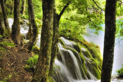 Abundance Photograph - Forrest Waterfall by Modern Art Prints
