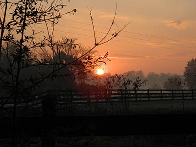 Photograph - Fort Christmas Farm Sunrise by George Pedro
