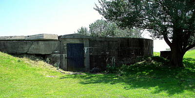 Photograph - Fort Delaware Bunker by Pamela Hyde Wilson