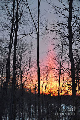 Photograph - Fort Drum Sunset by Gina Savage