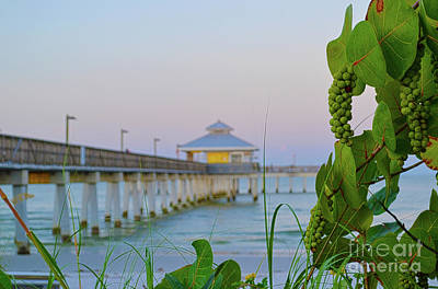 Fort Myers Beach Pier Art Print by Timothy Lowry