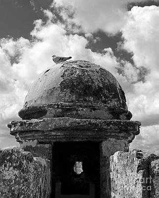Photograph - Fort Pigeon In Bw by Mary Haber