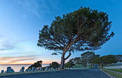 Graveyard Road Photograph - Fort Rosecrans National Cemetery by Alexis Birkill