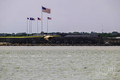 Photograph - Fort Sumter by Dale Powell