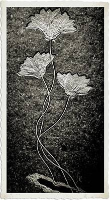 Triassic Photograph - Fossilized Flowers by Dan Sproul