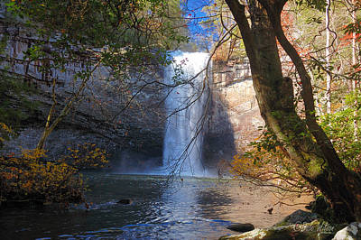 Foster Falls 1 Art Print by Dale Wilson