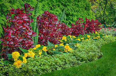 Photograph - Foster Park Gardens II by Gene Sherrill
