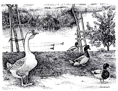 Foul At Paddon Lock Art Print by Joseph Juvenal