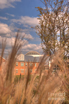 Photograph - Founders Hall Through The Grasses by Mark Dodd