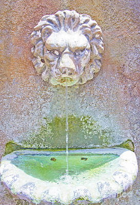 Photograph - Fountain II by Carol McCutcheon