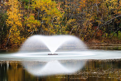 Tina Turner - Fountain In Fall by Gary Slawsky