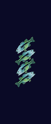 Four Bass Art Print by Jenny Armitage