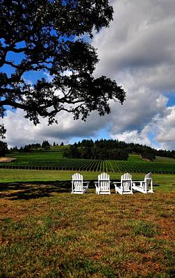 Jerry Sodorff Royalty-Free and Rights-Managed Images - Four Chairs In The Vineyard 19077 by Jerry Sodorff