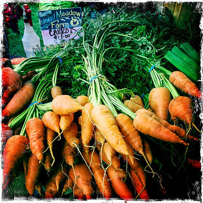 Photograph - Four Dollar Carrots by Randy Green
