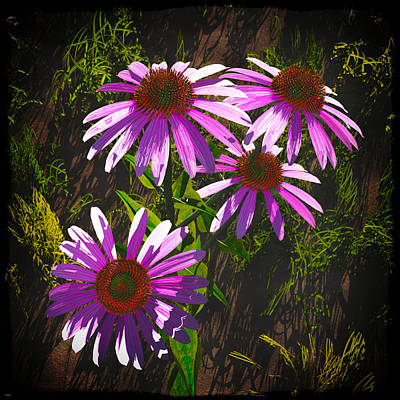 Digital Art - Four Flowers... by Tim Fillingim