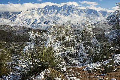 Photograph - Four Peaks In Snow by Dave Dilli