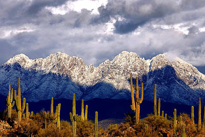 Four Peaks Mountains Arizona Original by Reed Rahn