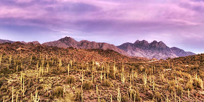 Photograph - Four Peaks Solitude by Anthony Citro