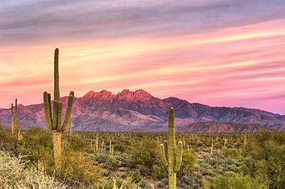 Photograph - Four Peaks Sunset by Anthony Citro