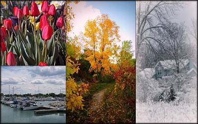Photograph - Four Seasons Collage by Kay Novy
