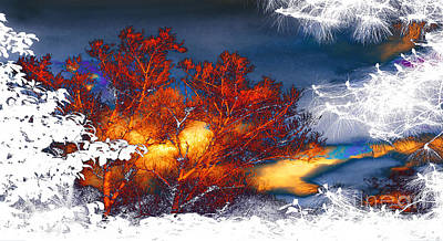 Photograph - Four Seasons Sun Clouds Trees Night Day by Jerry Cowart