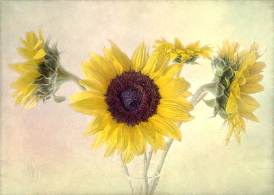 Print featuring the photograph Hello Sunshine by Louise Kumpf