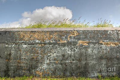 Photograph - Fourt Moultrie Battery Jasper Wall by Dale Powell