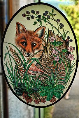 Photograph - Fox Cub by Graham Hawcroft pixsellpix