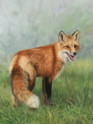 Animals Paintings - Fox  by David Stribbling