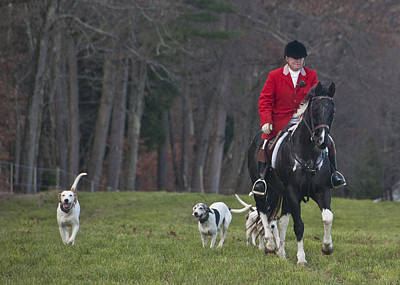 Photograph - Fox Hunt With Hounds by Paul Miller