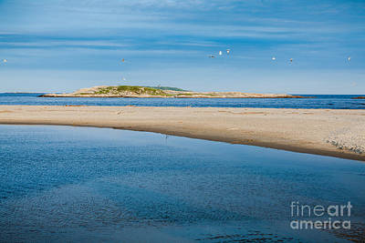 Photograph - Fox Island by Susan Cole Kelly