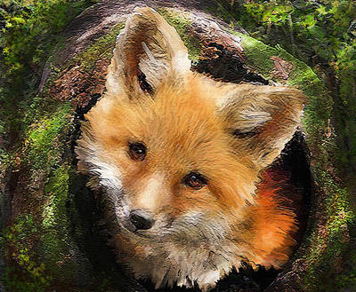 Digital Art - Fox Kit In Log by Jane Schnetlage