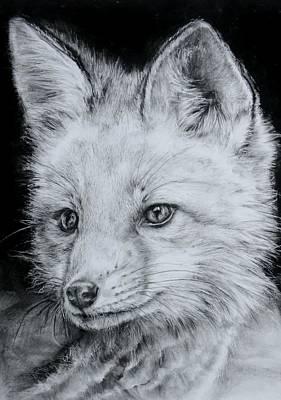 Fox Kit Art Print by Jean Cormier