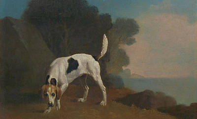 Foxhound Foxhound On The Scent, George Stubbs Art Print by Litz Collection