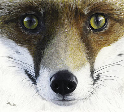 Drawing - Foxy Lady by Brent Ander