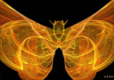 Fractal Butterfly Original by Michael Durst
