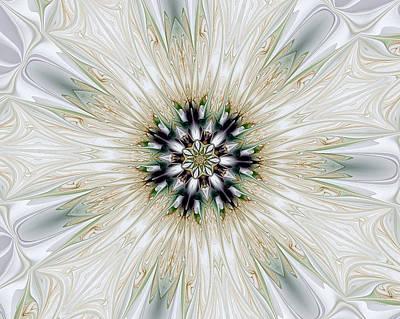 Fractal Desires Kaleidoscope Art Print