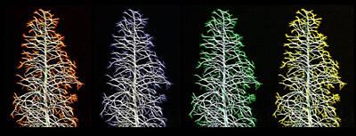 Fractal Seasons - Inverted Tetraptych Art Print by Steve Ohlsen