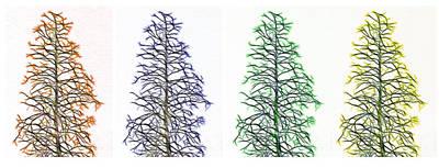 Leafy Mixed Media - Fractal Seasons - Tetraptych by Steve Ohlsen
