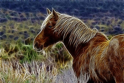 Photograph - Fractal Stallion by Wes and Dotty Weber