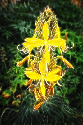 Painting - Fractalius Yellow Country Flowers - Series II by Doc Braham