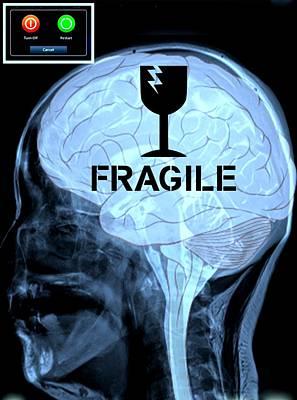 Fragile Substance Art Print by Paulo Zerbato