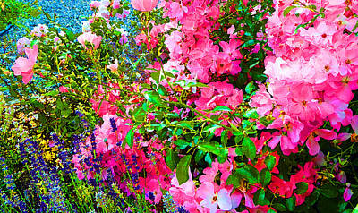 Photograph - Fragrant Paintstyle by Laurie Tsemak